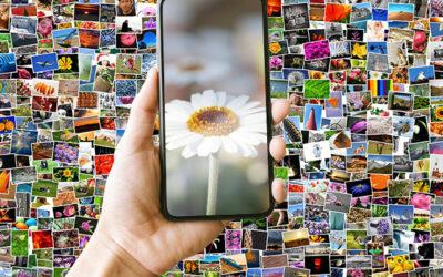 Visuelle Suche: Ein echter Mehrwert für Nutzer und Websitebetreiber